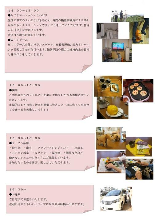 DS2.jpg